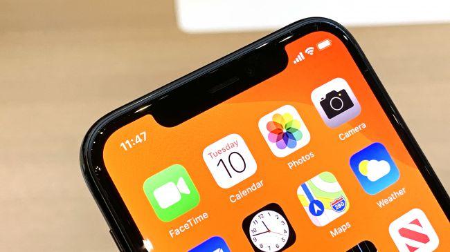Tai thỏ trên iPhone 11 Pro