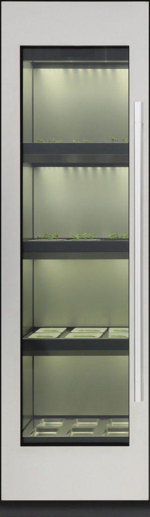Vườn rau thời 4.0, vườn rau ngay trong nhà bạn